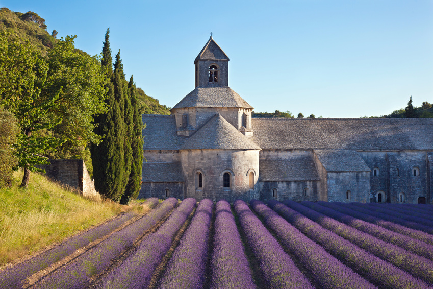 The Senanque Abbey ?????? | Lavender in Provence